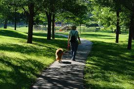 Active Walking