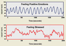 Stress and hart rate