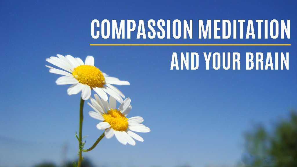 Compassion Meditation and Your Brain